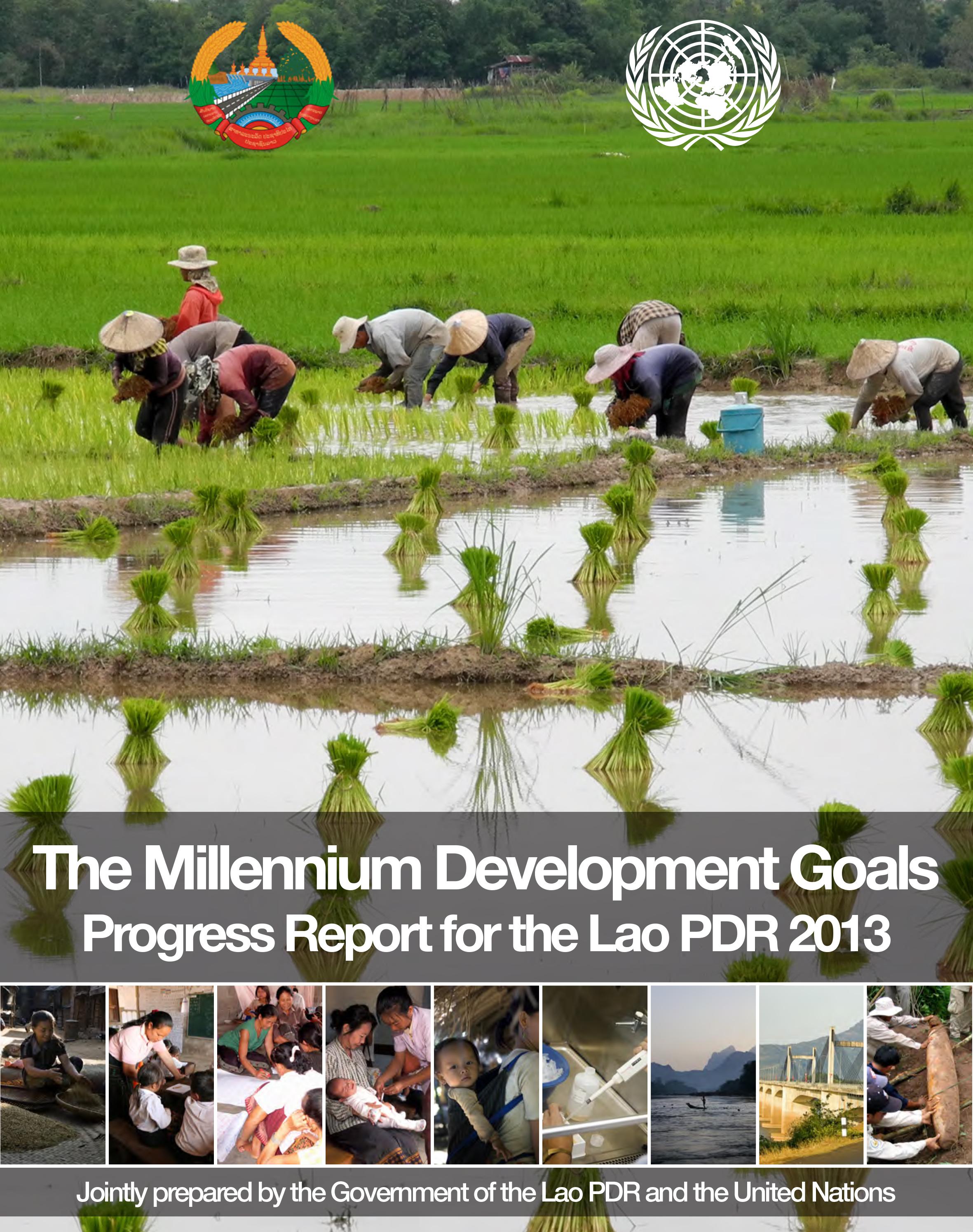 2013 MDGs Progress Report - Cover