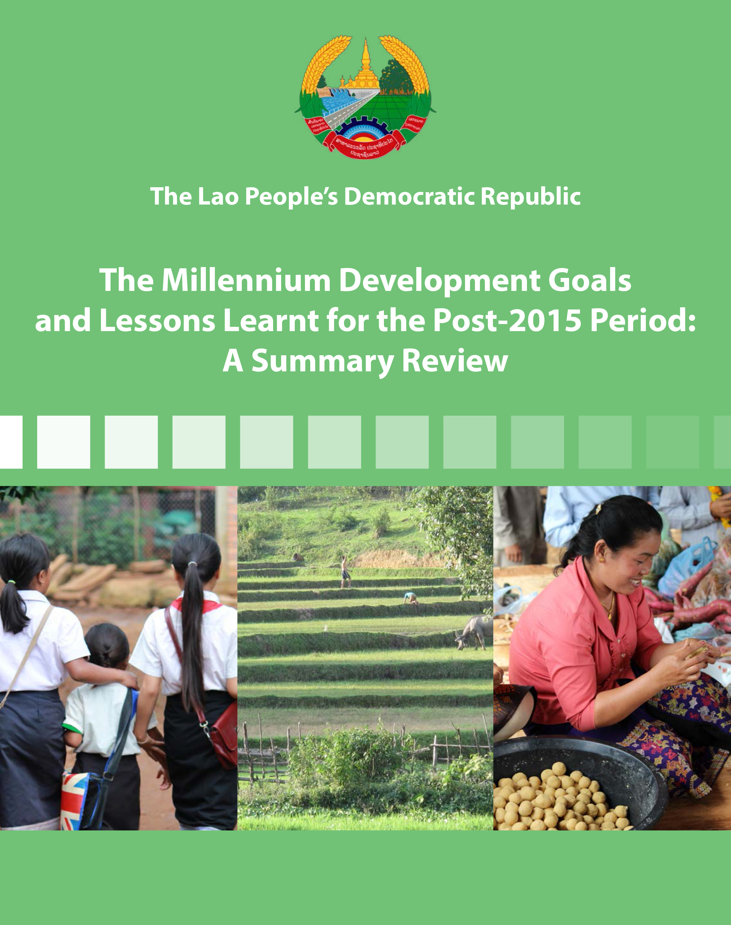 2015 MDGs Lessons Learned - Cover
