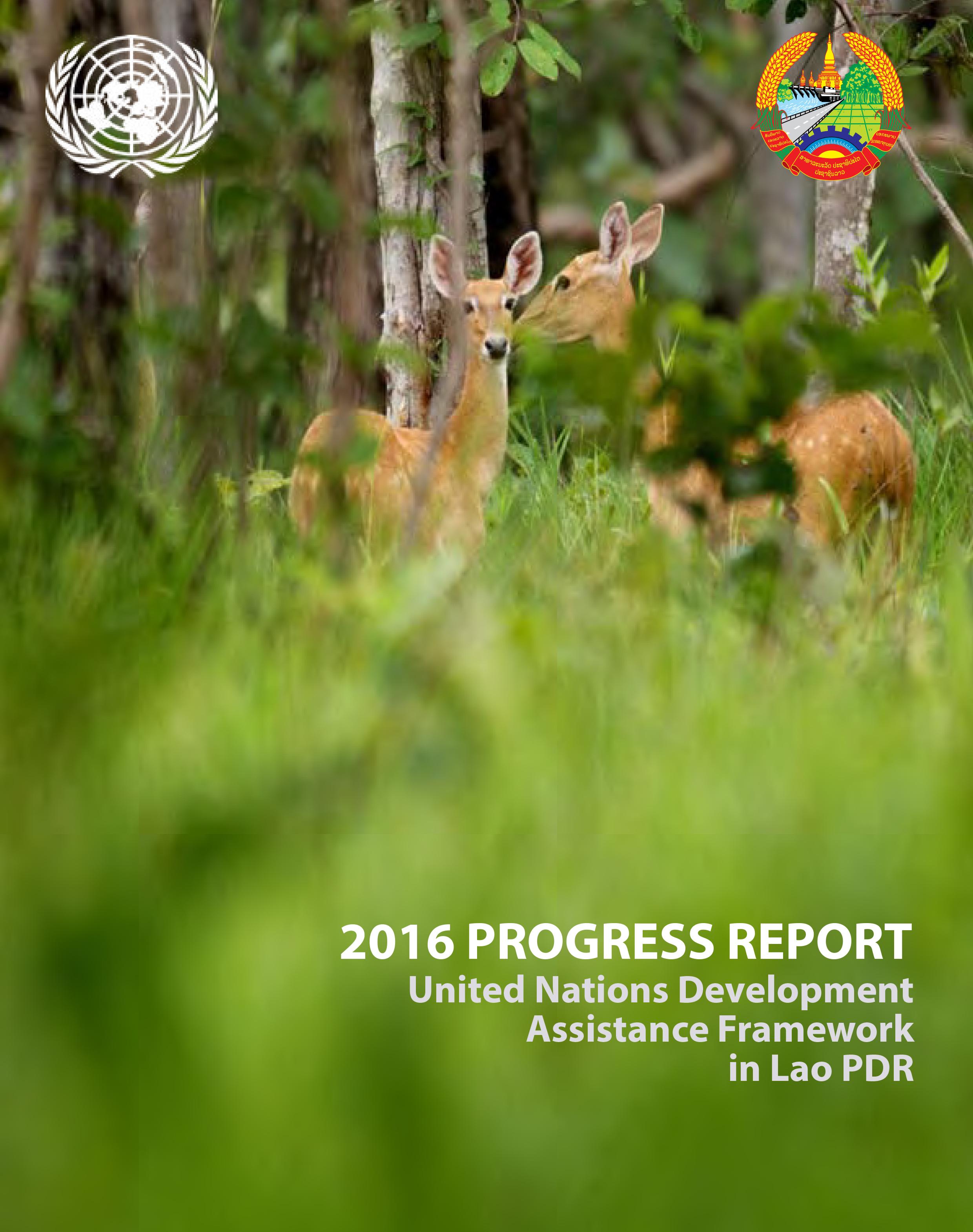 2016 UNPF Progress Report - Cover