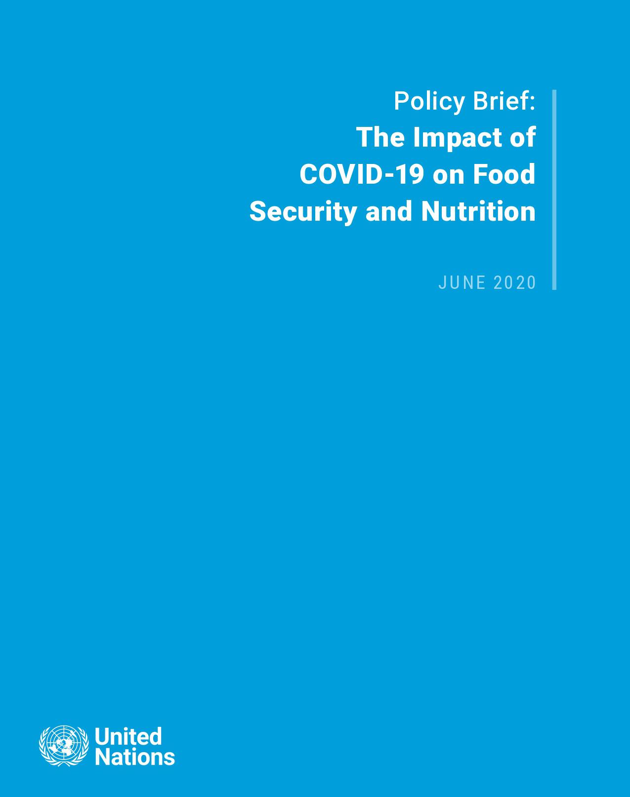 UN Global SERF - Cover