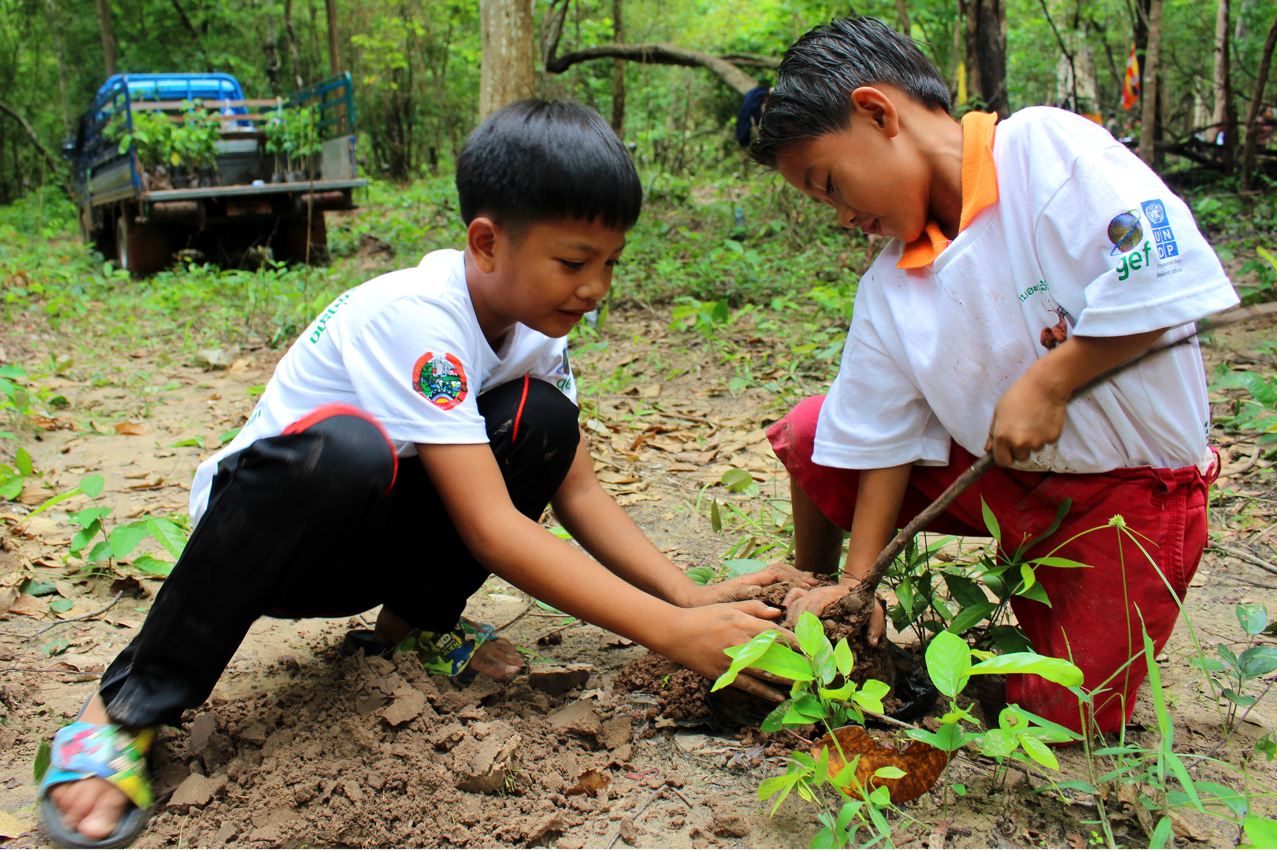 Planting trees help to reduce climate change