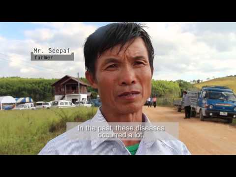 How Lao farmers can benefit from agro-biodiversity in the rice field